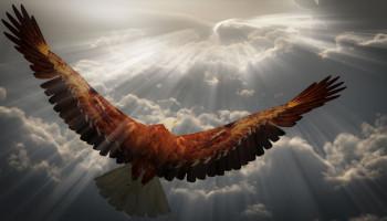 Leaders fly